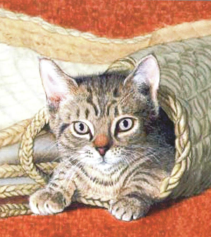 Small Card - Basket of Mischief
