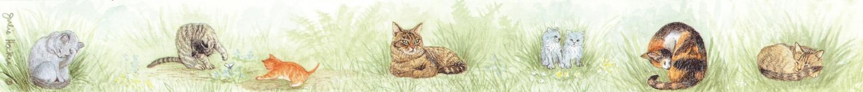 Ruler - Cat