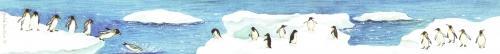Ruler - Penguins