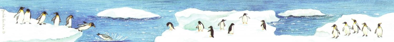 Ruler - Penguins