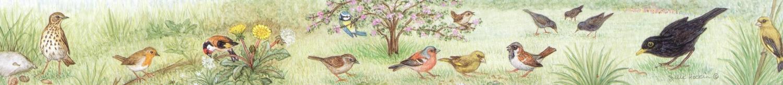 Ruler - Garden Birds