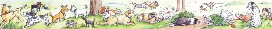 Ruler - Dogs