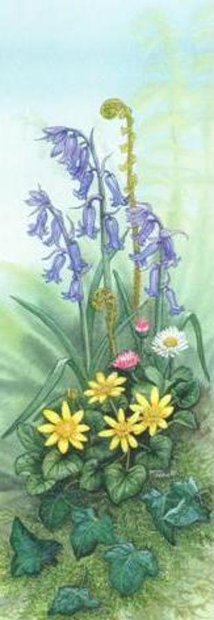 Pen & Pad Set - Bluebells