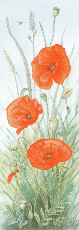 Pen & Pad Set - Poppy