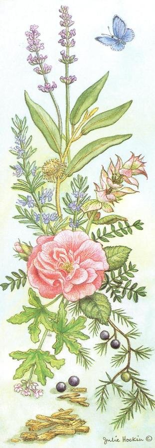Bookmark - Aromatherapy Herbs