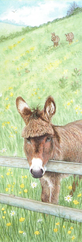 Pen & Pad Set - Donkey