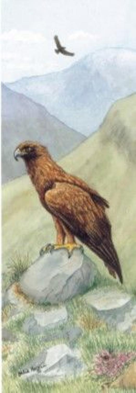 Pen & Pad Set - Golden Eagle