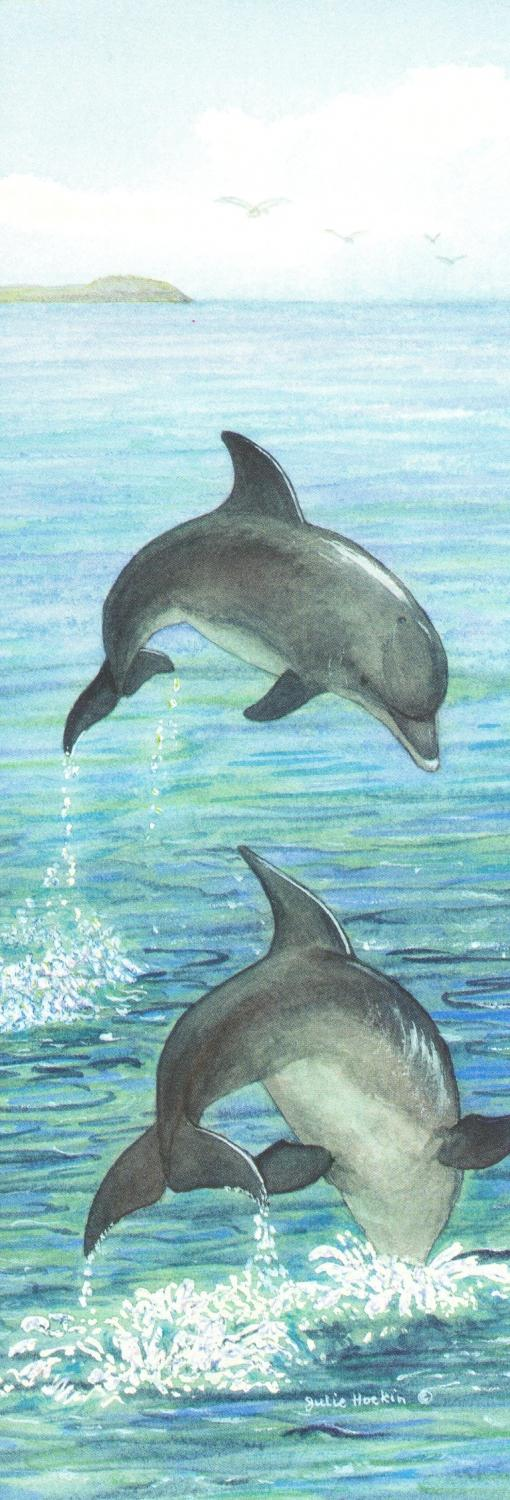 Bookmark - Dolphins